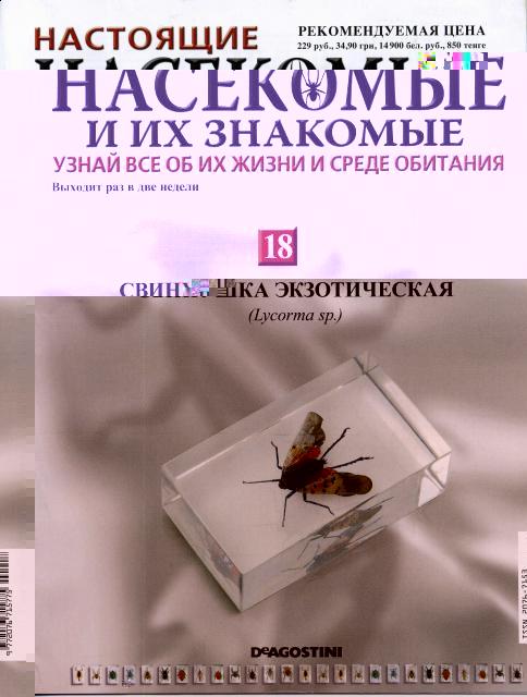 насекомые и их знакомые 11 выпуск фото