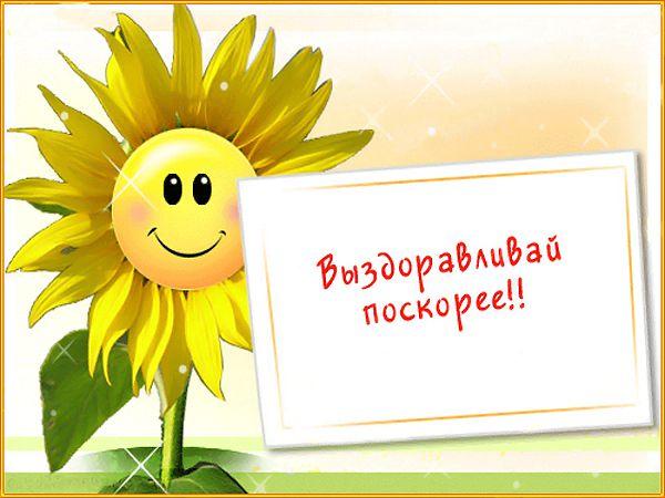 http://nacekomie.ru/forum/files/201311/15161_e878290589af252bfce35ad1c6281148.jpg
