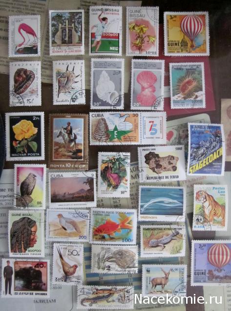 почтовые марки мира график выхода синтетического термобелья