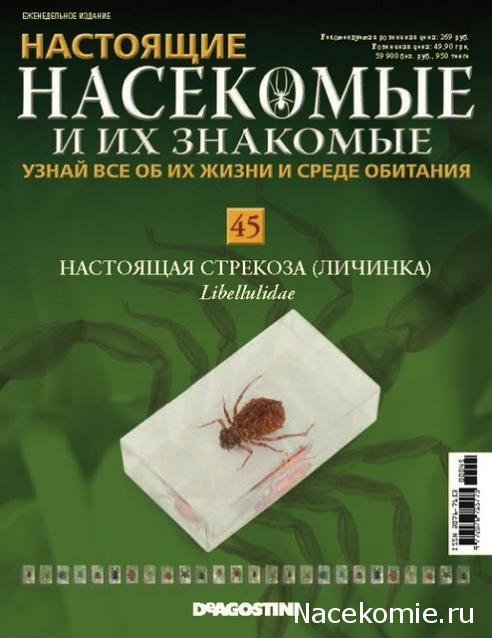 журнал насекомые и их знакомые 37 насекомое