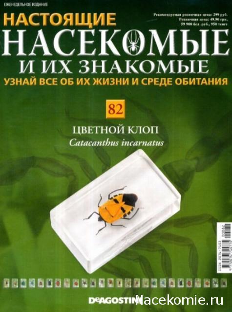 насекомые их знакомые выпуск 7