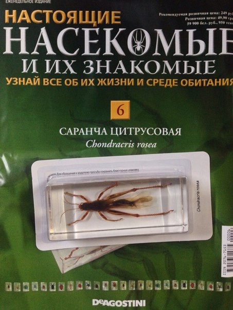 насекомые и их знакомые 2016 все выпуски