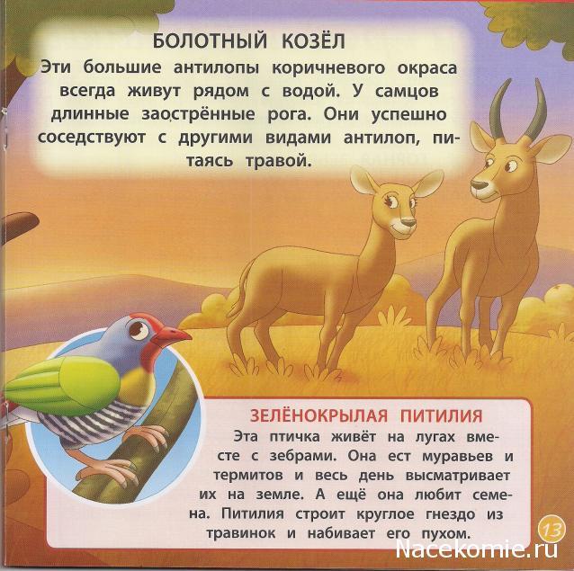 История про львицу и беременную олениху 53