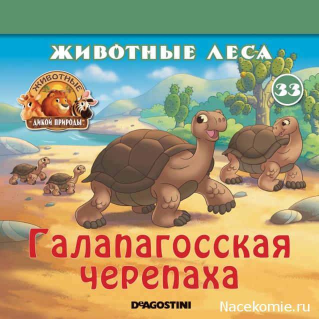 Животные Дикой Природы №33 - Самка Черепахи Джиджи