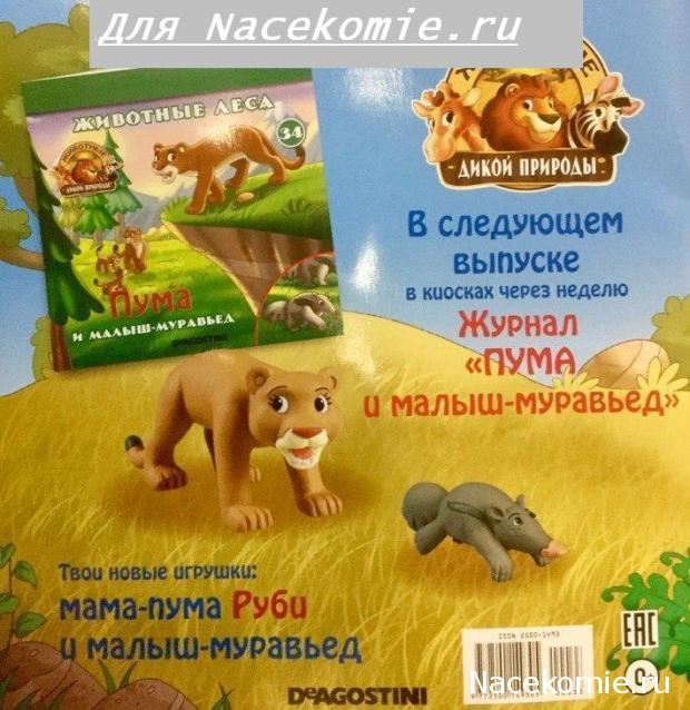 Животные Дикой Природы №34 - Самка Пумы Руби  и Детеныш Муравьеда