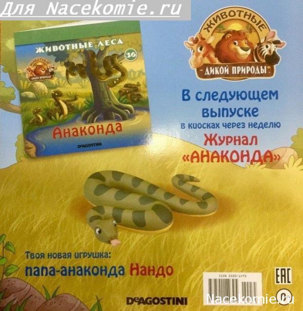 Животные Дикой Природы №36 - Анаконда Нандо