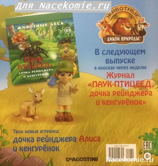 Животные Дикой Природы №35 - Кенгурёнок и дочка рейнджеров Алиса