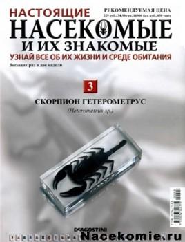 Насекомые и их знакомые № 3 Скорпион Гетерометрус (Heterometrus sp.)