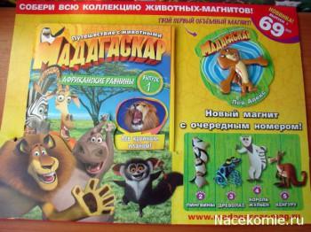 Журнал Мадагаскар Путешествие с животными, Коллекция Магнитов