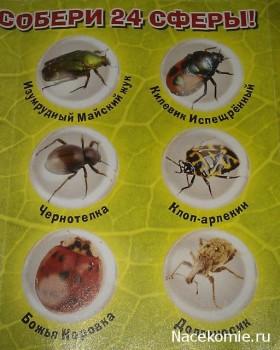 Био Сферы список насекомых