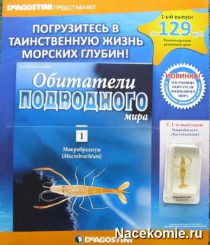 Журнал Обитатели Подводного Мира