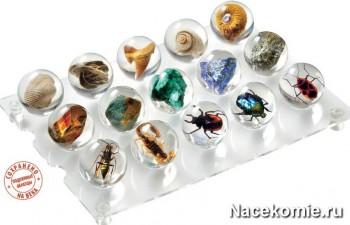 Коллекция Чудеса Природы