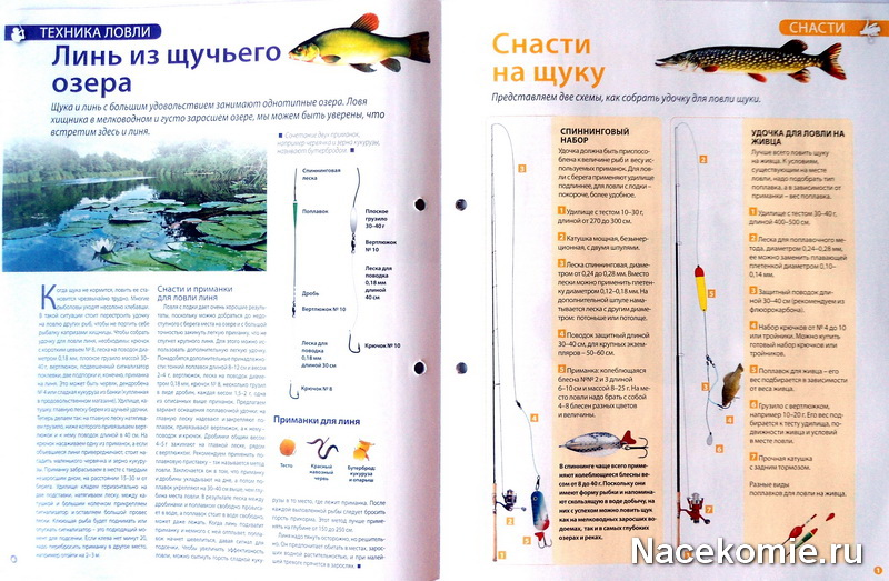 советы в помощь рыбаку