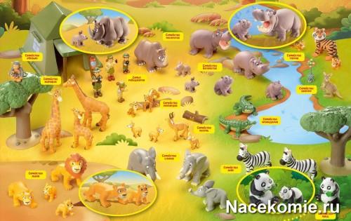 Коллекция Животные Дикой Природы