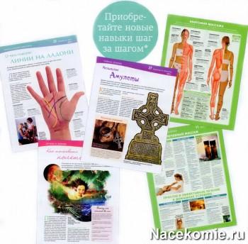 Рубрики журнала