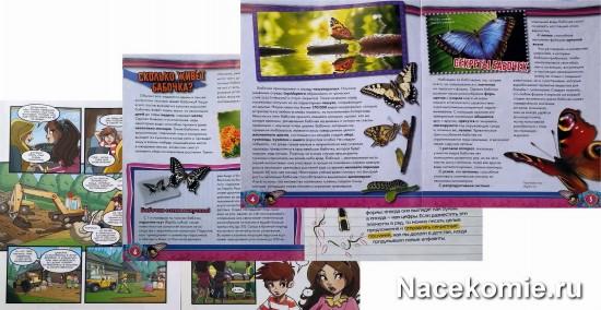 Страницы журнала
